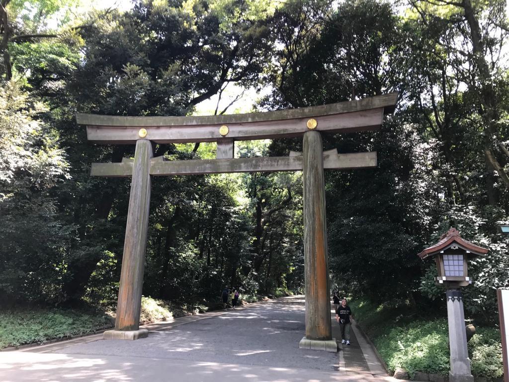 Il grande torii in legno all'ingresso del santuario Meiji