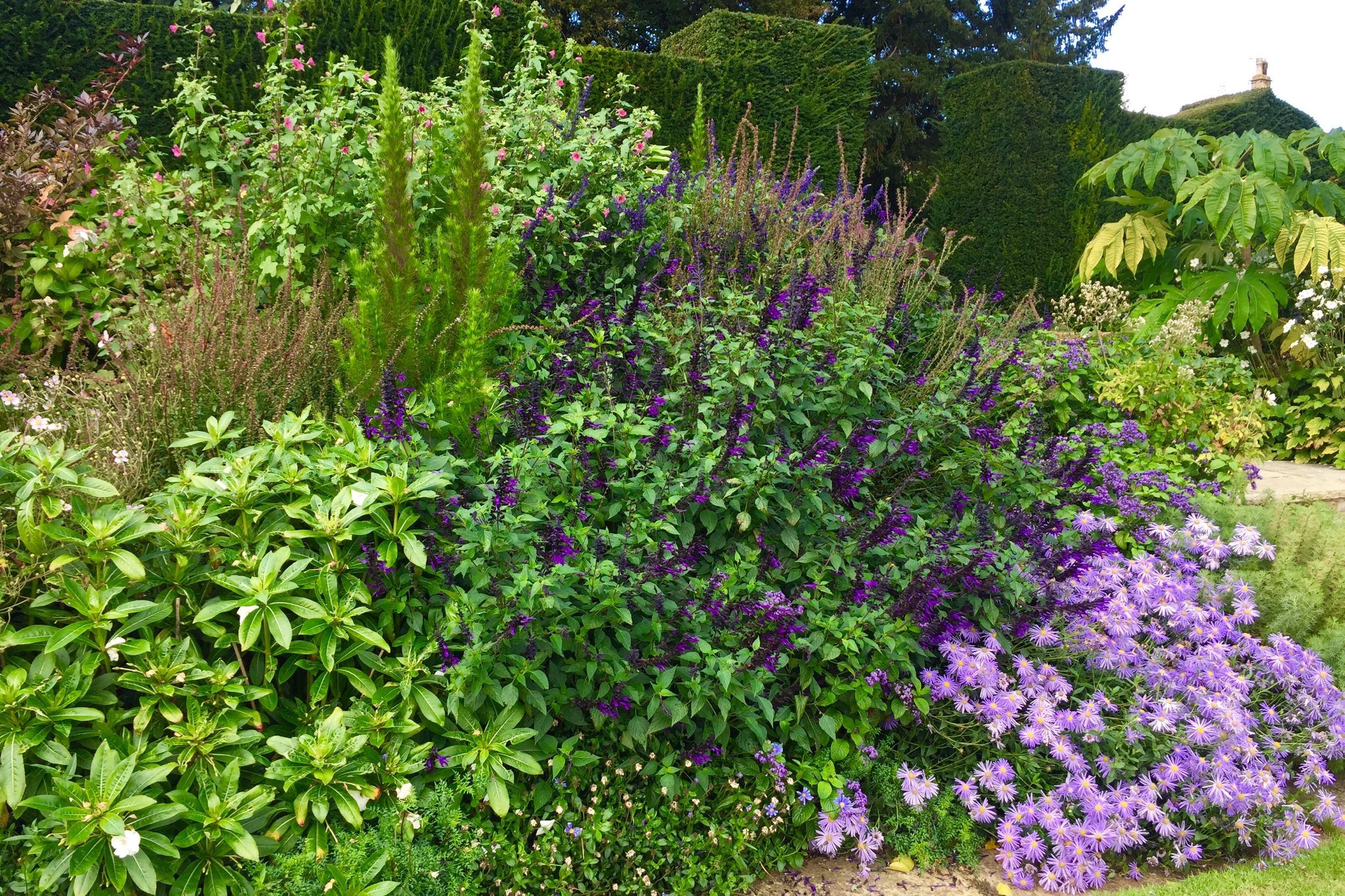 Bourton House Gardens