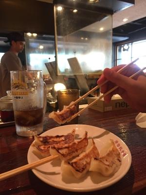 un piatto di gyoza ripieni di carne di Lou, a Omotesando