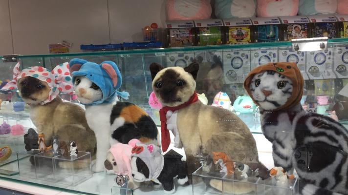 cuffiette per gatti in un negozio di takeshita street