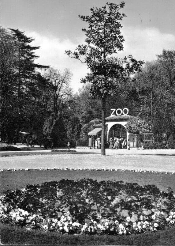L'ingresso dello Zoo